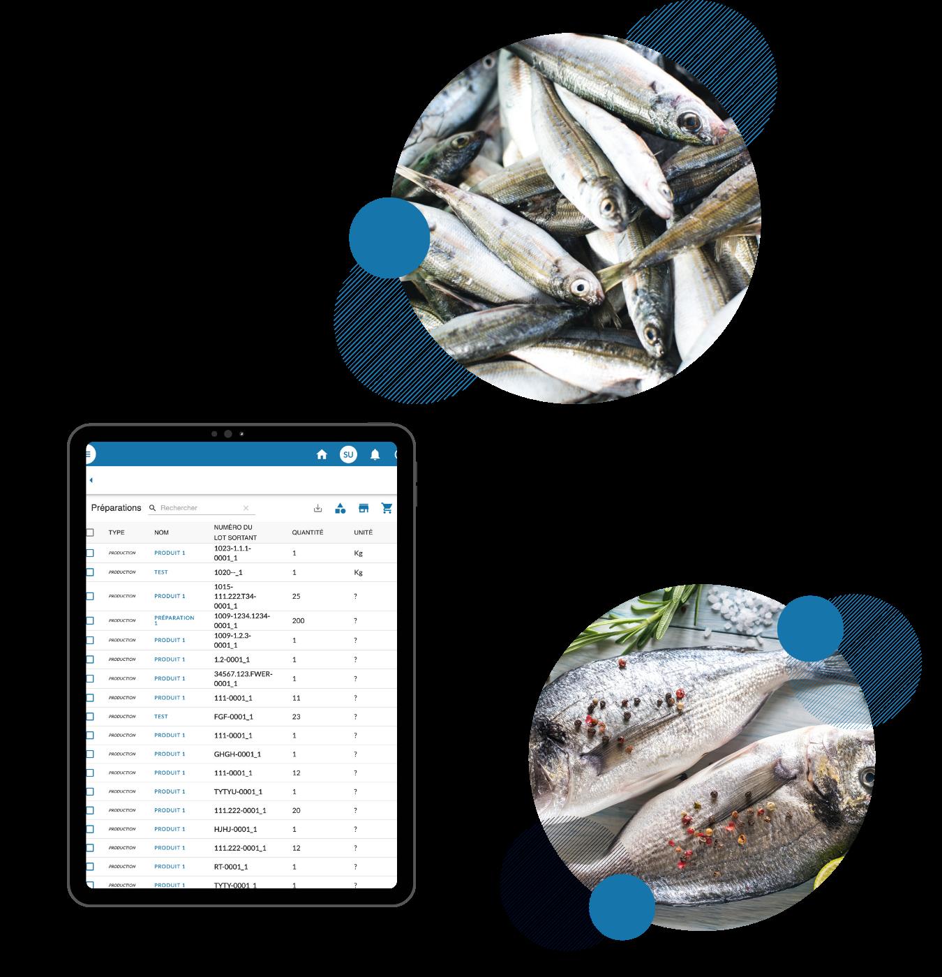 La traçabilité digital en poissonnerie